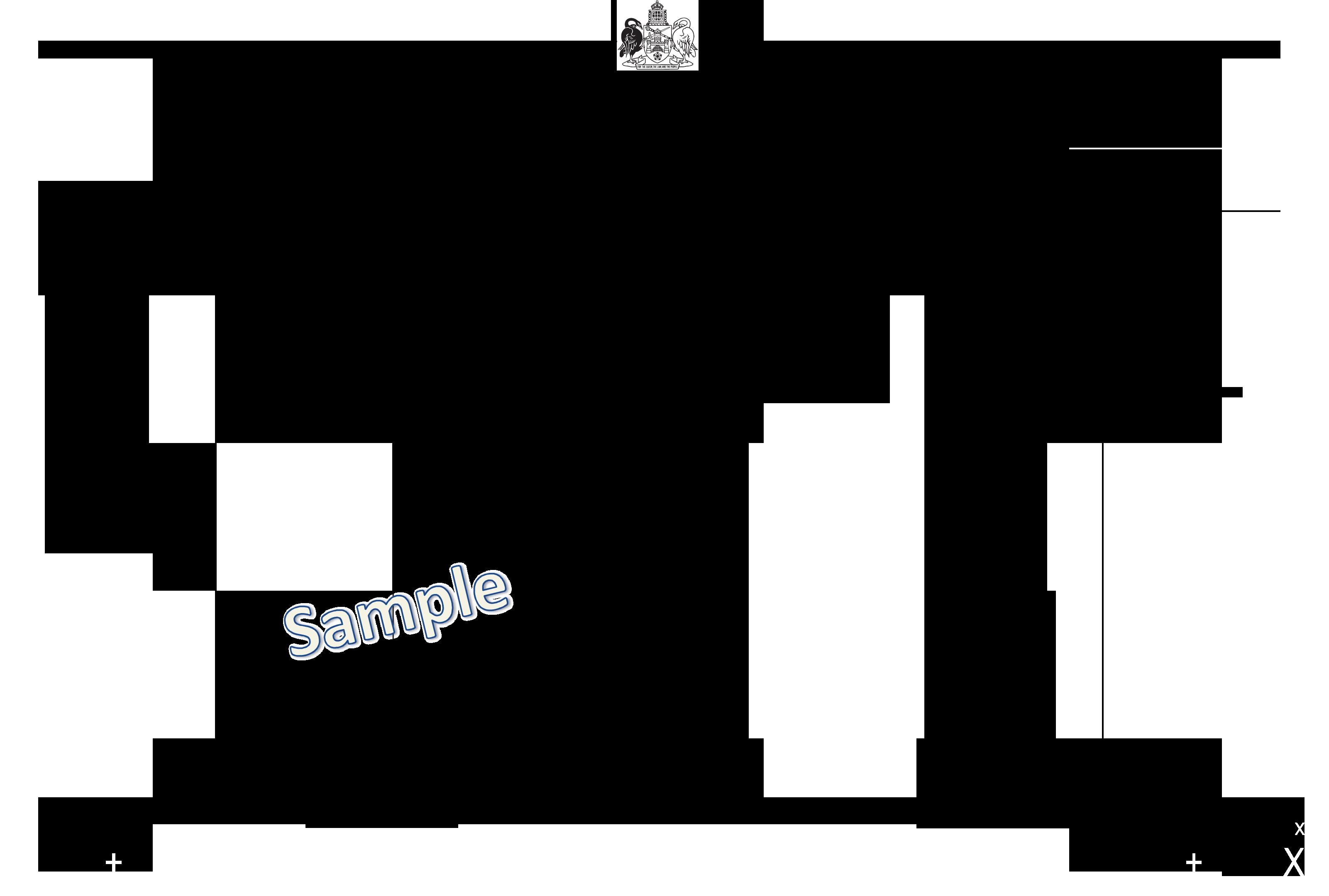 Molonglo sample ballot paper